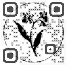 Aveda QR Code